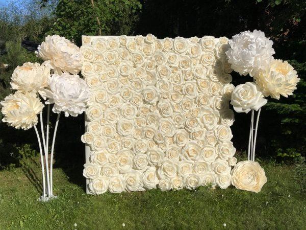 Dekoraija. fotosienelė baltų rožių